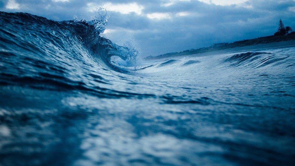OCEANOaem.jpg