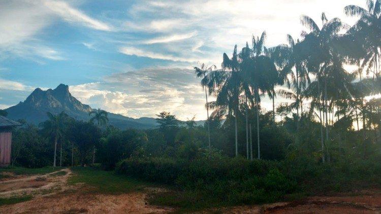 Amazônia, reserva de água e ar do planeta