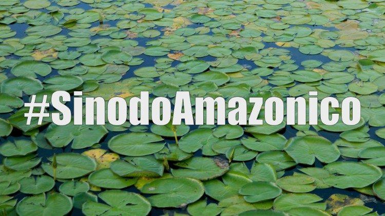 2019.06.12 hashtag Sinodo Amazonico, Amazzonia