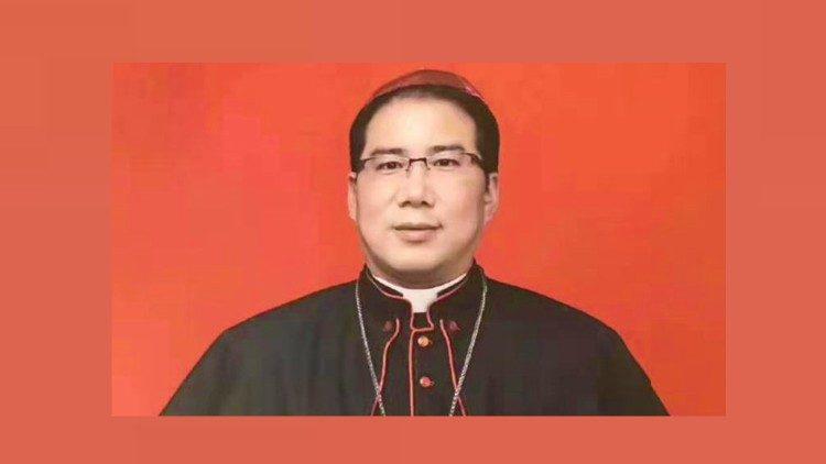 2019.08.28 SE mons. Stefano Xu Hongwei, oggi è  stato consacrato Vescovo Coadiutore di Hanzhong (Shaanxi) in Cina