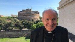 cardenal Christoph Schönborn  Querida Amazonia exhortación Papa ampliar mirada