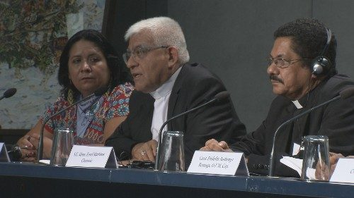 Amazon Synod press briefing