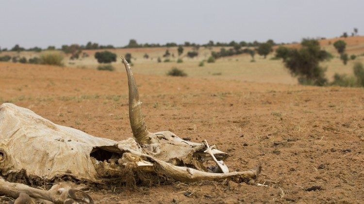 Drought in the Sahel