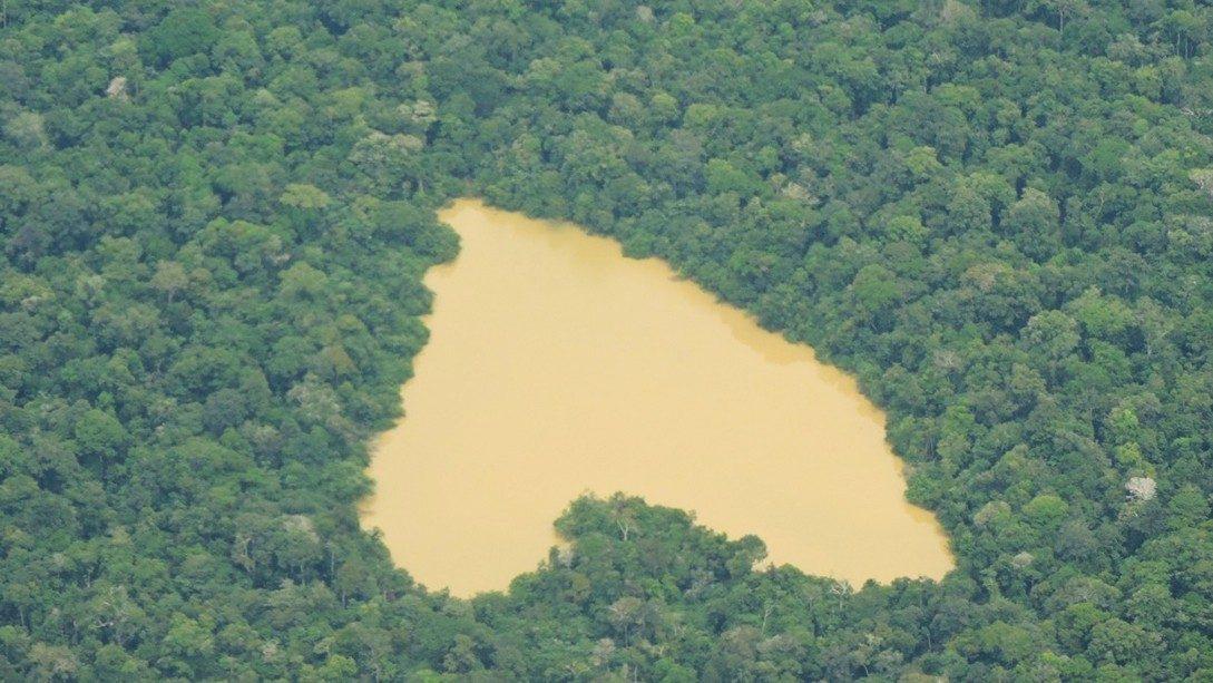 Brasil. Inversionistas católicos exhortan al gobierno a proteger