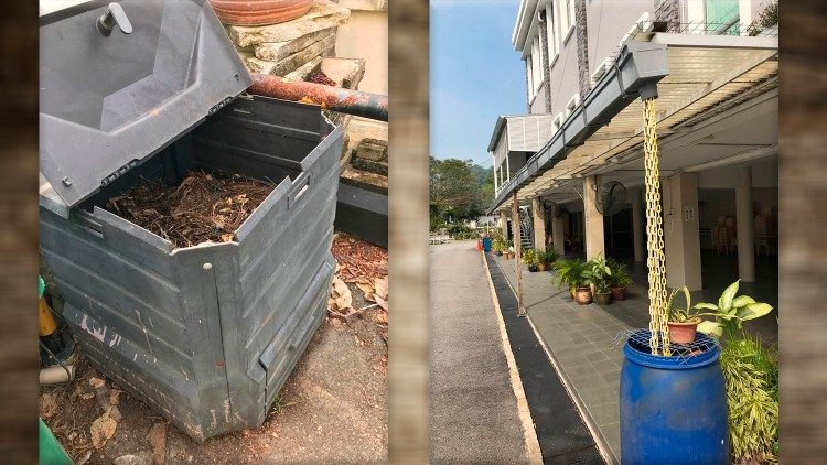 Rainwater collection and compost