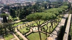 A glimpse of the Vatican Gardens