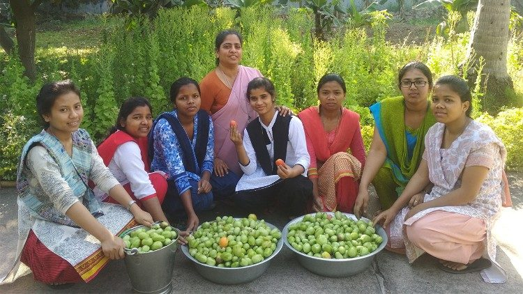 Una cosecha biológica de la comunidad de Patna