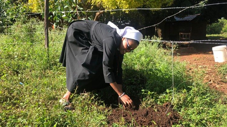 A nun planting a tree in Kakamega forest