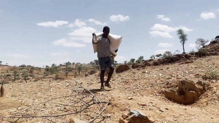 La famine gagne le Tigré éthiopien selon les Nations unies.