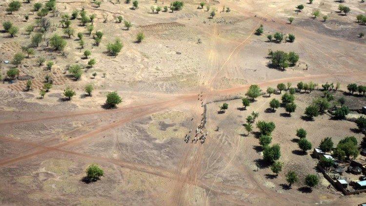 Zonas deserticas