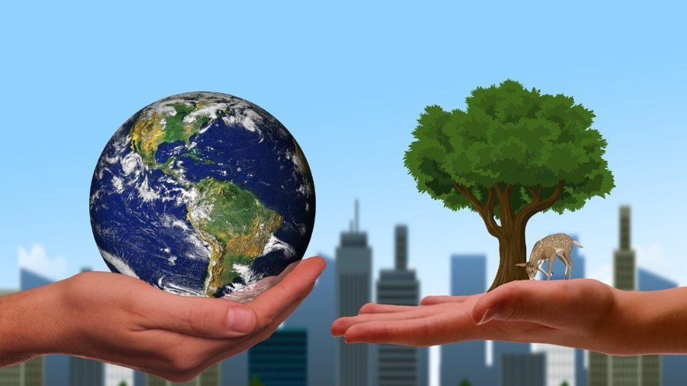 El Papa invita a todos a adoptar una ecología integral.
